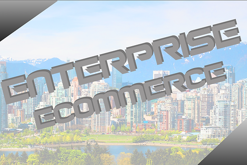 Enterprise Ecomerse