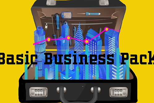 Basic Business  Pack