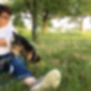 der Hund und ich, Gaby Langer, Hundeschule