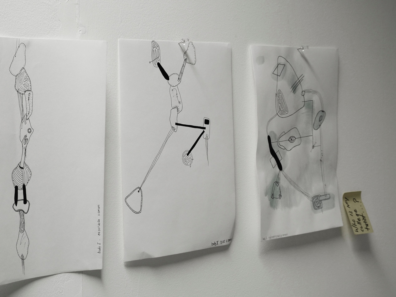 Body Drawings - Wall View