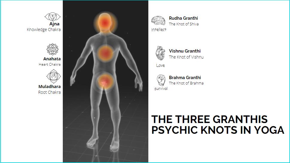 The three granthis in yoga and Kundalini - Brahma Granthi, Vishnu Granthi, and Rudra Granthi
