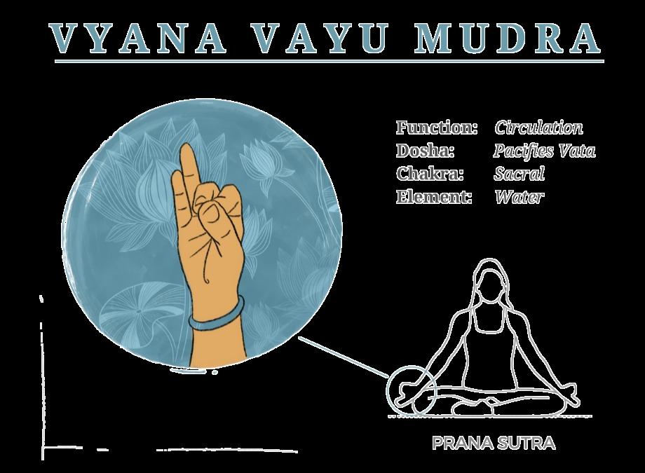 Vyana Vayu Mudra Illustration annotated