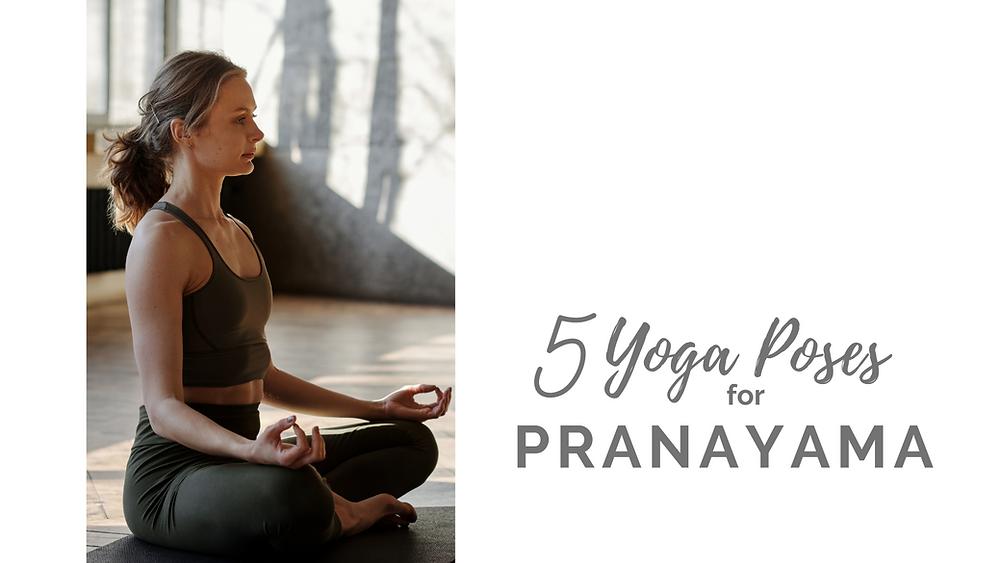 Banner Image for best postures for pranayama