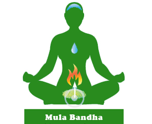 Illustration of effects of mula bandha
