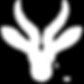 The Springbok logo