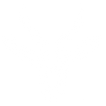 The Springbok logo