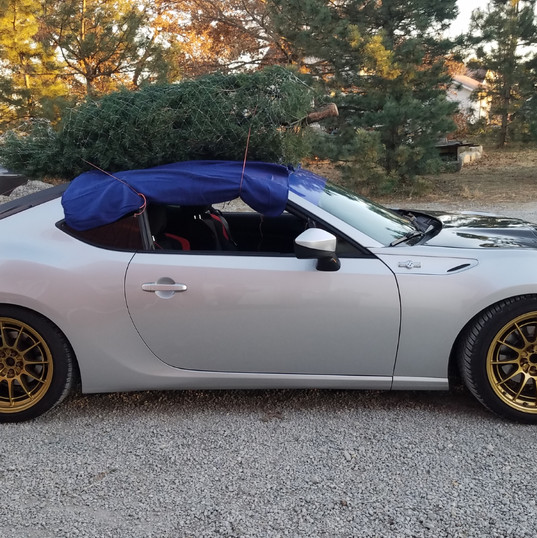 Any car can haul a tree!!