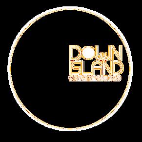 DI Logo  33.png