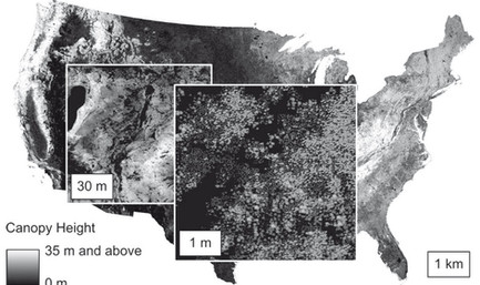 On-Demand Landcover Simulation