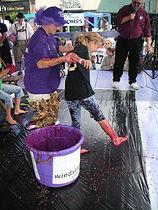 Grape Jamboree festival in Geneva Ohio, Celebrating the Region's Vineyards