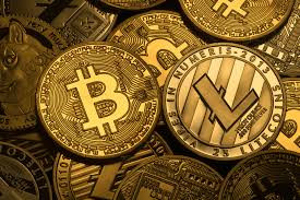 What is the next 100x cryptocurrency?