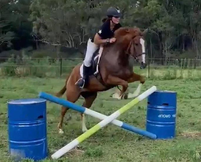 ROSE (UNNAMED 2014) - Thoroughbred Mare