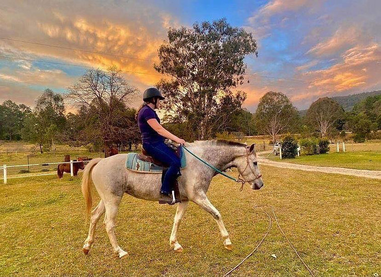 PIP - Station Bred Mare