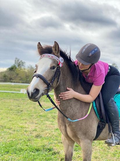 COCONUT - Riding Pony  Mare