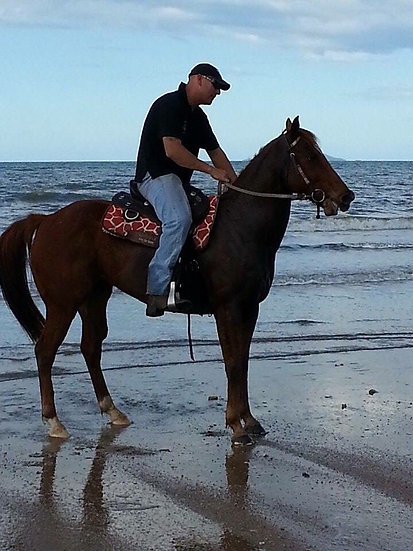 (KEELAS RUN 2006) - Thoroughbred Mare