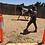 Thumbnail: CALLISTO - Paint x Clydie x Standardbred Mare