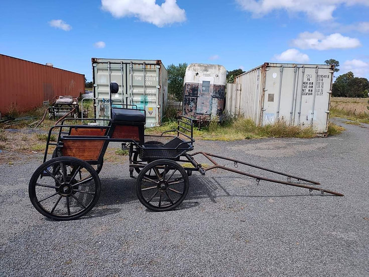 COMBINED DRIVING CARRIAGE
