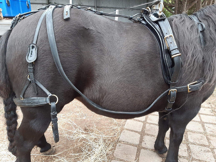 SHOW QUALITY LEATHER HARNESS Shetland/small pony