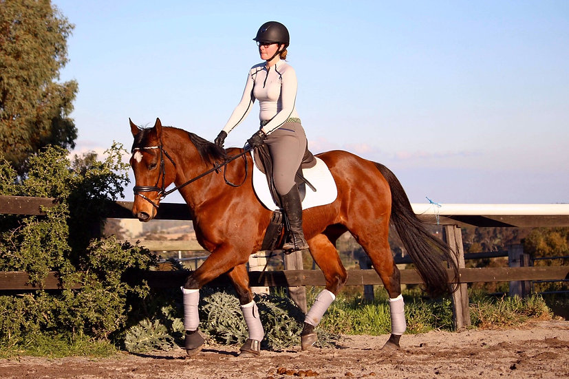 ESTHER - Thoroughbred Mare