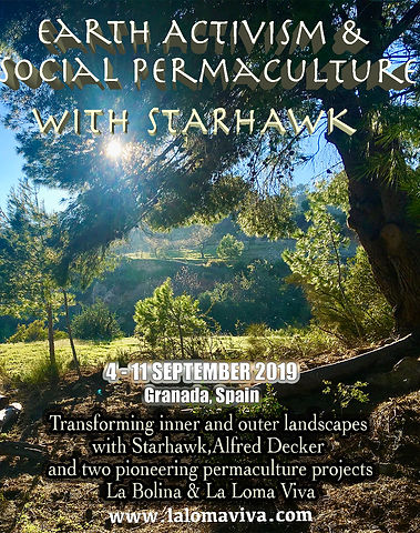 social permaculture course.jpg