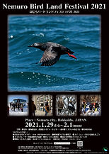 Bird_Land_2021_B2-1_s.jpg