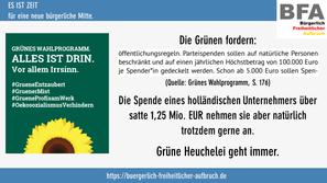 #GrueneEntzaubert #8