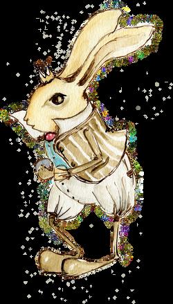 bunny-boy.png