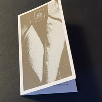 LITTLE BOOK.jpg