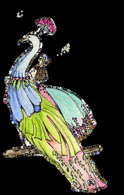 peacock-love.png