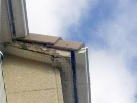 台風で破損した屋根は水漏れ危険(箕面市)