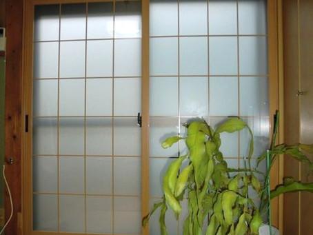 【施工事例】箕面市S様邸にて和障子を内窓(プラマードU)に交換しました
