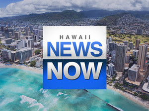HAWAII NEWS NOW: Hawaii retailers seek pandemic rent relief from government