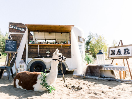 Currently Pretending We Are At The Beach | Alberta Sand Dune Wedding