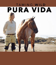 PURA_VIDA_MOVIE__VIMEO_BUTTON.jpg