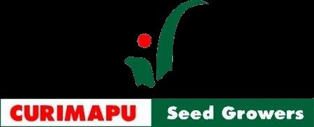 Curimapu.logo