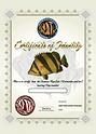 bar_b5tate_suea_certificate_datnioides.p