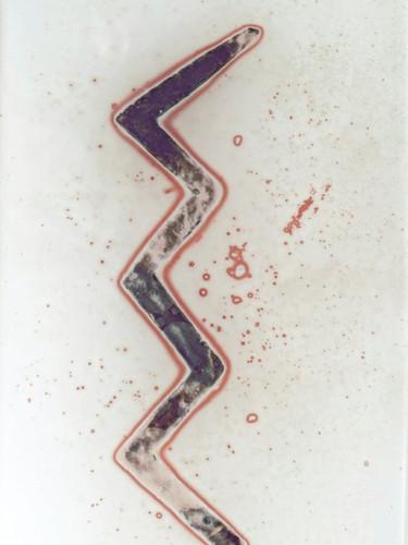 cuneiform5