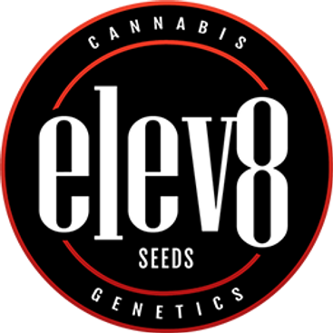 3 Packs of Seeds for $375