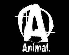 animalpak%20logo_edited.jpg