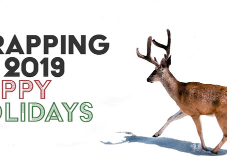 Wrapping Up 2019 – Happy Holidays