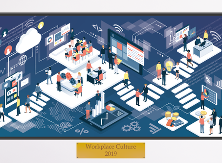 What is 'Workplace Culture'?