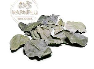 Kaffir Lime Leaves.jpg