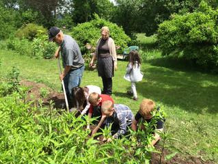 Bringing Butterflies to Middleburgh