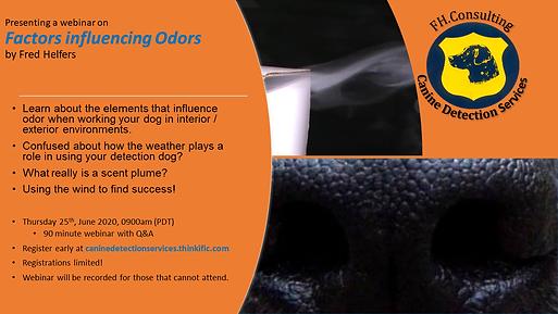 Webinar advert for Factors Influencing O