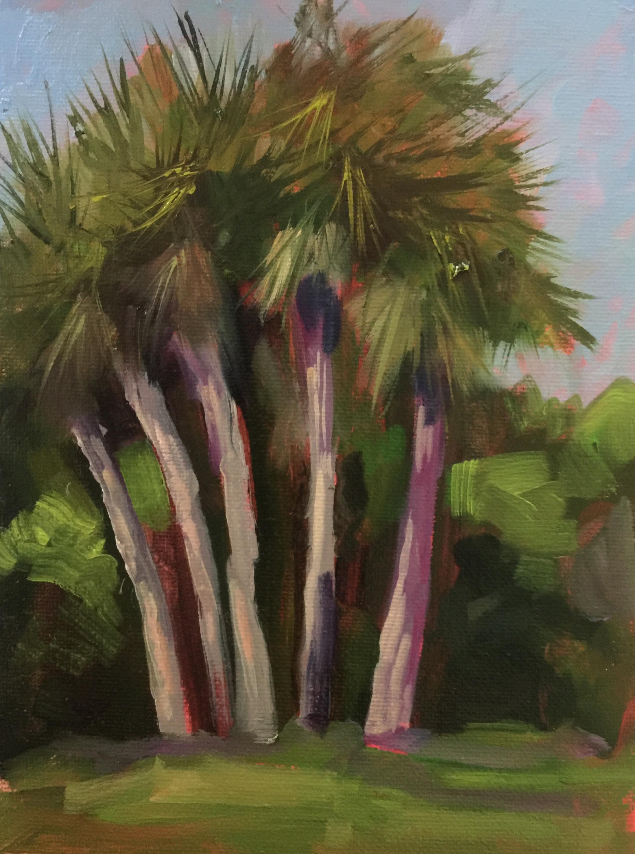 Washington Oaks Park (palms)