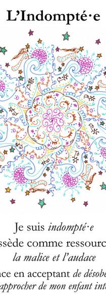 Cartes l'oracle des mandalâmes_Page_07.j
