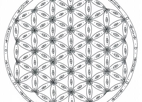 Mandala à colorier - Fleur de vie et motifs