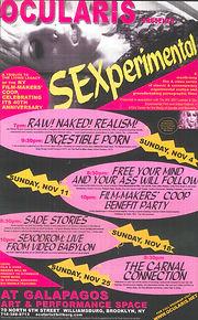 Sexperimental_Page_1.jpg