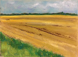Yellow Ocher Fields I LaPapa.jpg