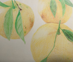 KatieEPROJECT_ Food in Art